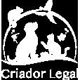 Campanha Criador Legal